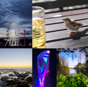 2019 – 2020 Photography Competition Winners